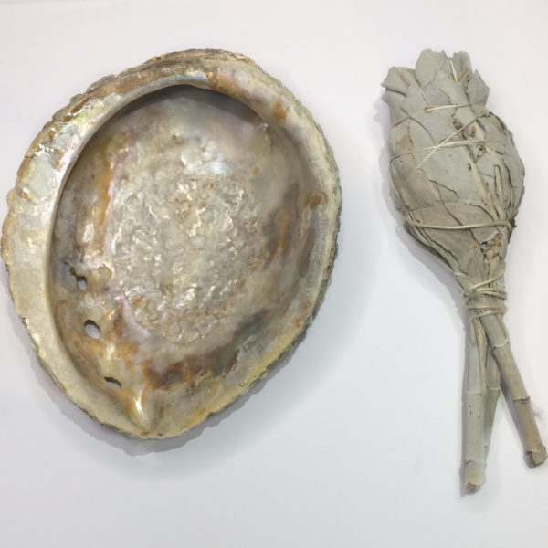 An abalone shell with a sage smudging stick to the right of it